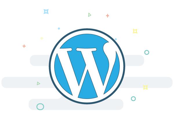 Wordpress maatwerk
